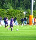 Fiorentina - Moena