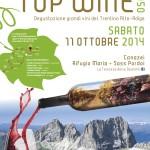 16^ edizione del Simposio Top Wine 2950