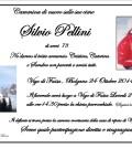 Silvio Pellini