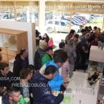 mobilificio artigiani associati moena inaugurazione nuova esposizione 25.10.14 valle di fassa com60