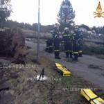 soraga danni per vento forte ph vigili del fuoco volontari3