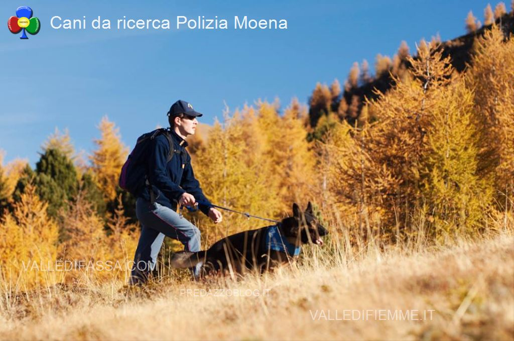 cani da ricerca polizia moena fassa1