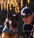 cani da ricerca polizia moena fassa2