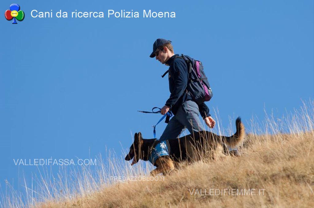 cani da ricerca polizia moena fassa3