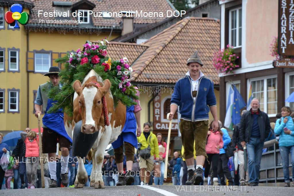 festival-del-puzzone-dop-moena3