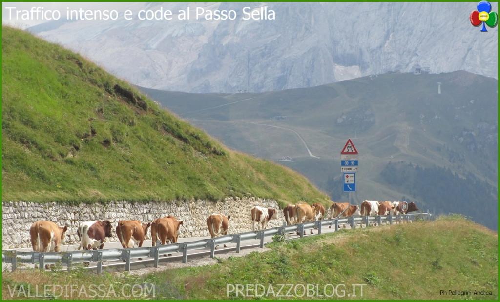 traffico-e-code-al-passo-sella